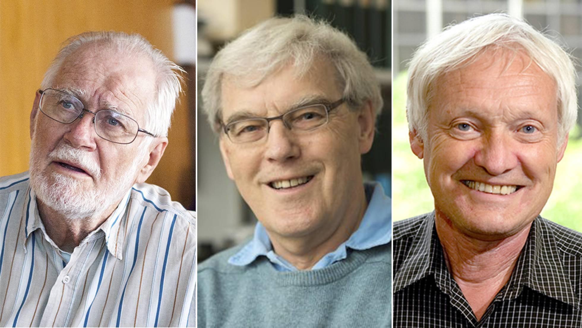 Premio Nobel de Química a un método para observar la vida privada de las moléculas