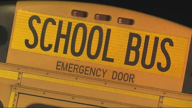 School bus driver fired