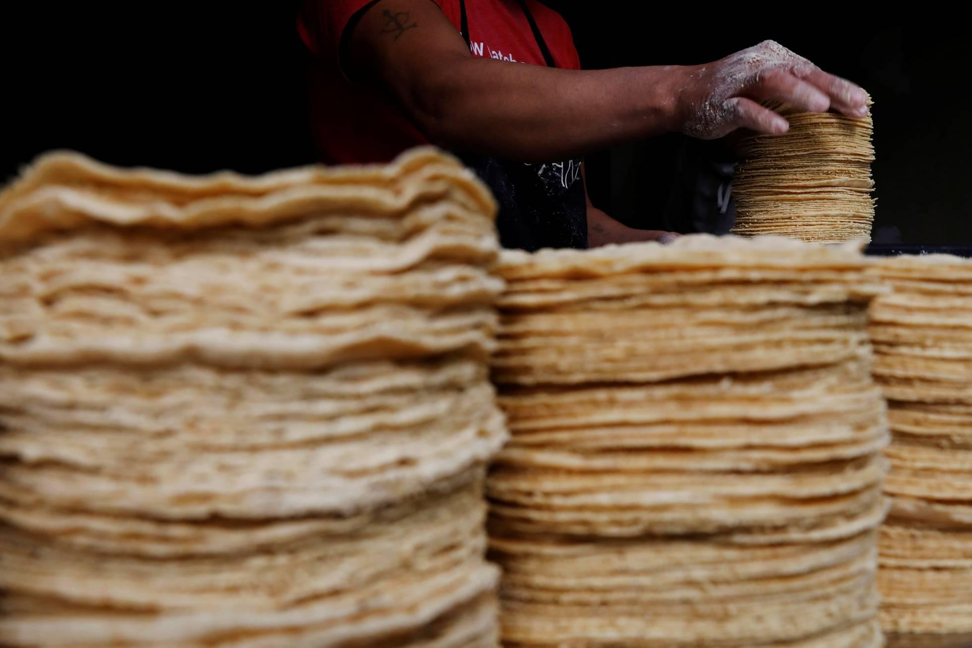 Un estudio encuentra glifosato en la mayor productora de tortillas de maíz de México