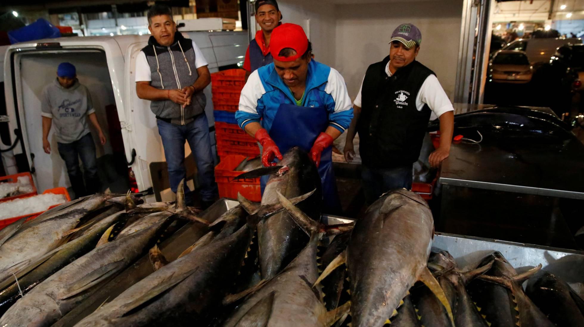 México pierde la 'guerra del atún' con Washington