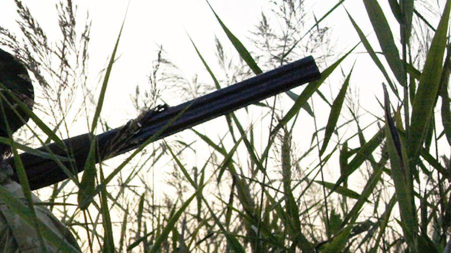 1 hunting