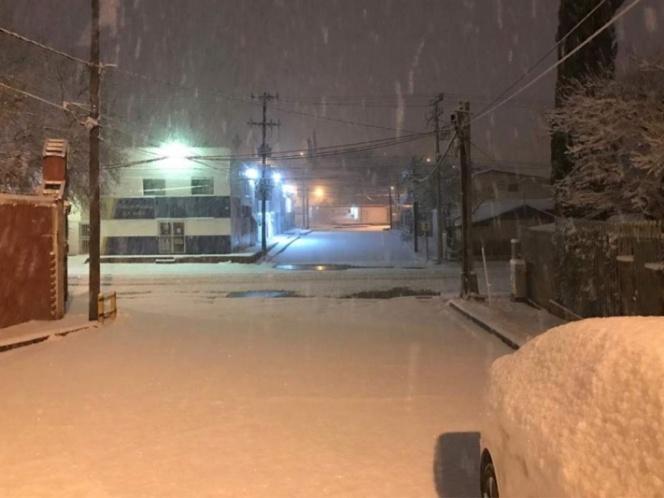 nevada en sonora