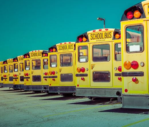 schoolbuses