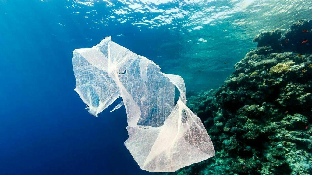 Las bolsas plásticas envenenan el medio ambiente y tu puedes ser parte de la solución