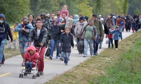 migracion