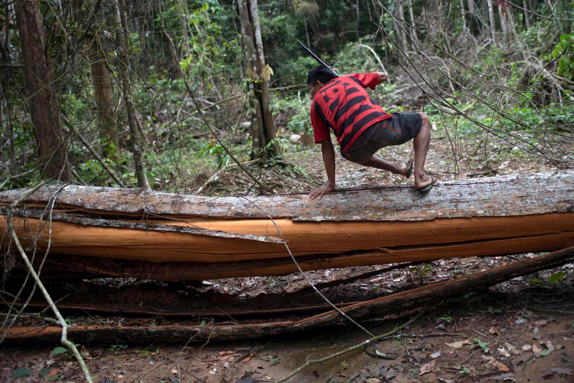 Más de 600 científicos piden a Europa que presione a Brasil por la deforestación