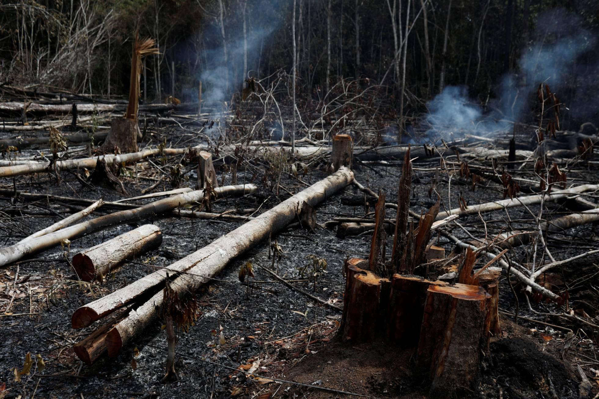 Los incendios en la Amazonia desatan las críticas contra el Gobierno de Bolsonaro