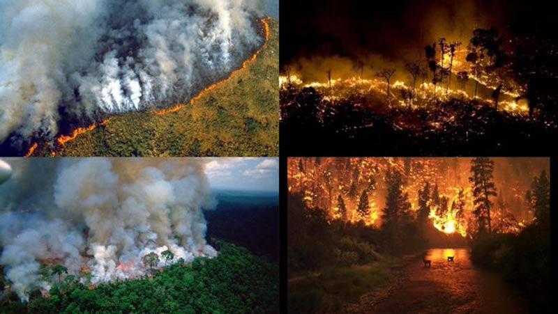 prayforamazonia ola incendios amazonas 21 08 2019