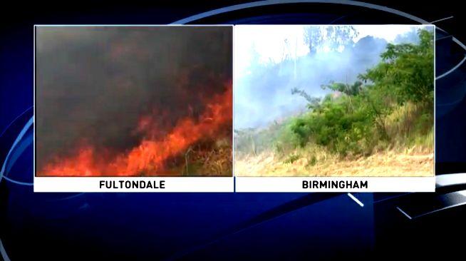 Alabama bajo alerta de incendios en todo el estado, ya que hubo más de 350 incendios forestales en septiembre