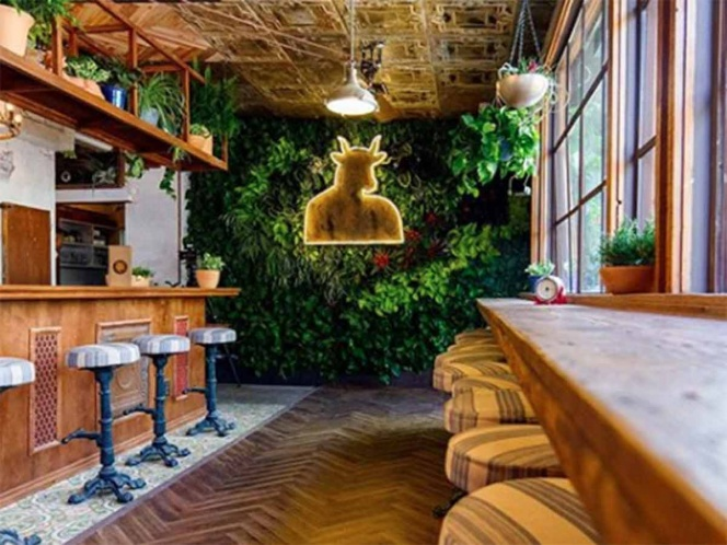 Abre en EU el primer 'coffe shop' de marihuana