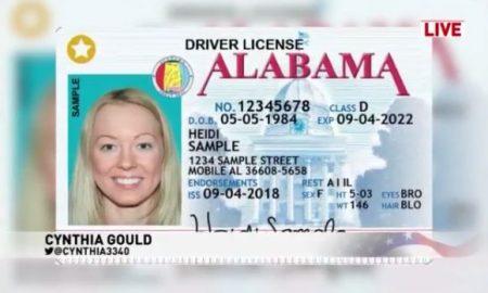 renovar licencias Star ID