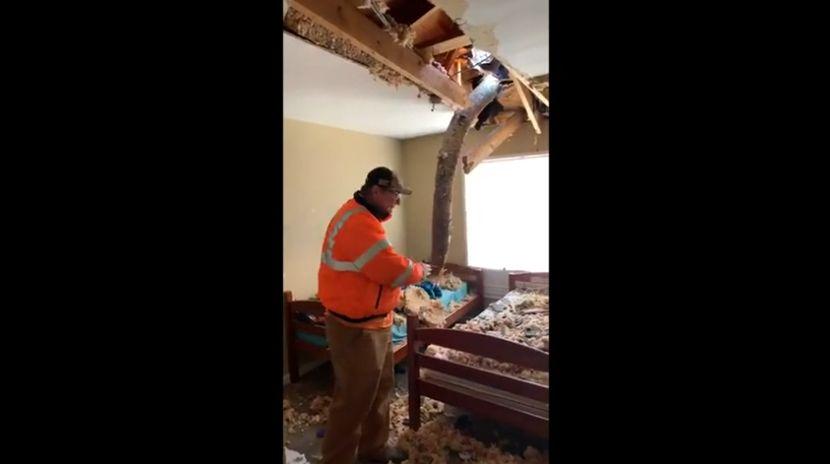 Niña estaba durmiendo cuando un árbol cayó en su habitación, en Birmingham