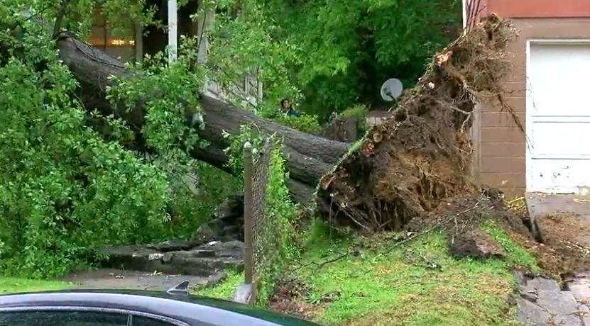 El centro de Alabama fue golpeado fuertemente por las tormentas de la mañana del jueves