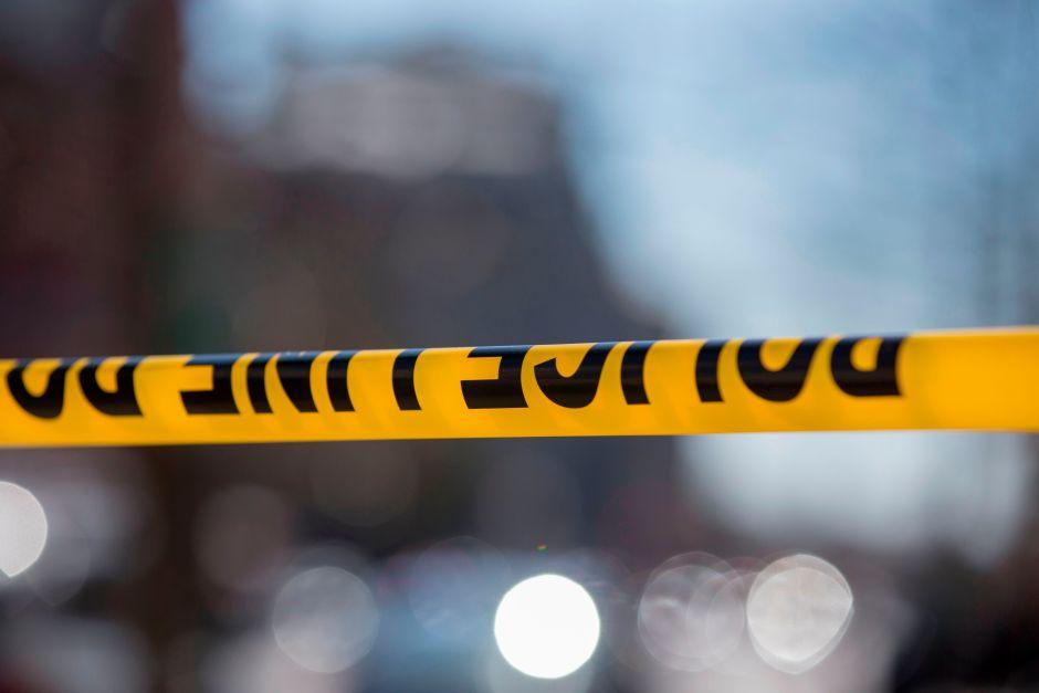 ¿Suicidio o linchamiento?: Hallan a un afroamericano ahorcado en un árbol en Palmdale, California