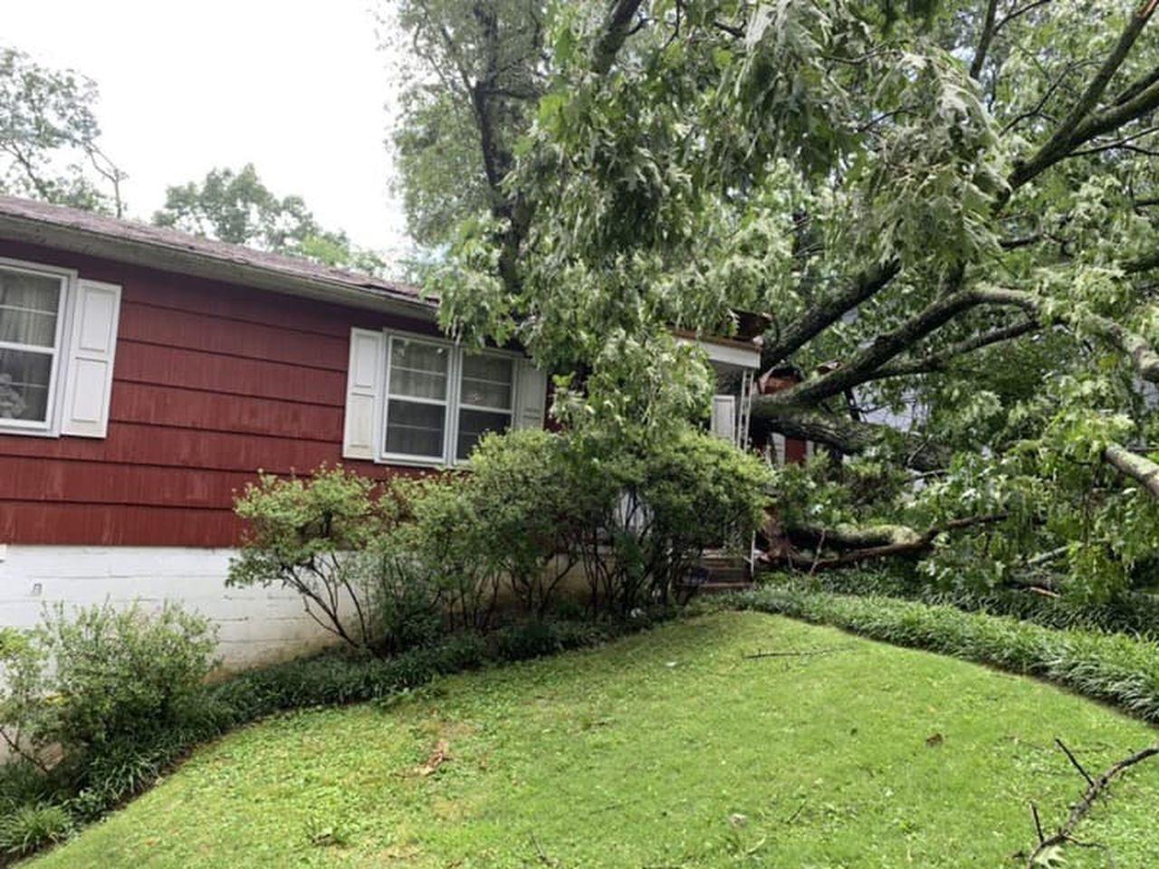 1 muerto después de que un árbol cayera sobre una casa en Birmingham