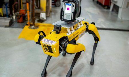 ford y perros robot