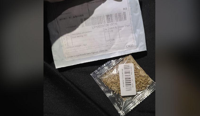 Paquetes misteriosos de semillas, podrían ser parte de una estafa, según advierte el Departamento de agricultura de Alabama