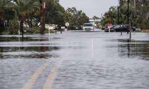 El huracán Teddy se refuerza y Sally, degradada a depresión, descarga lluvia