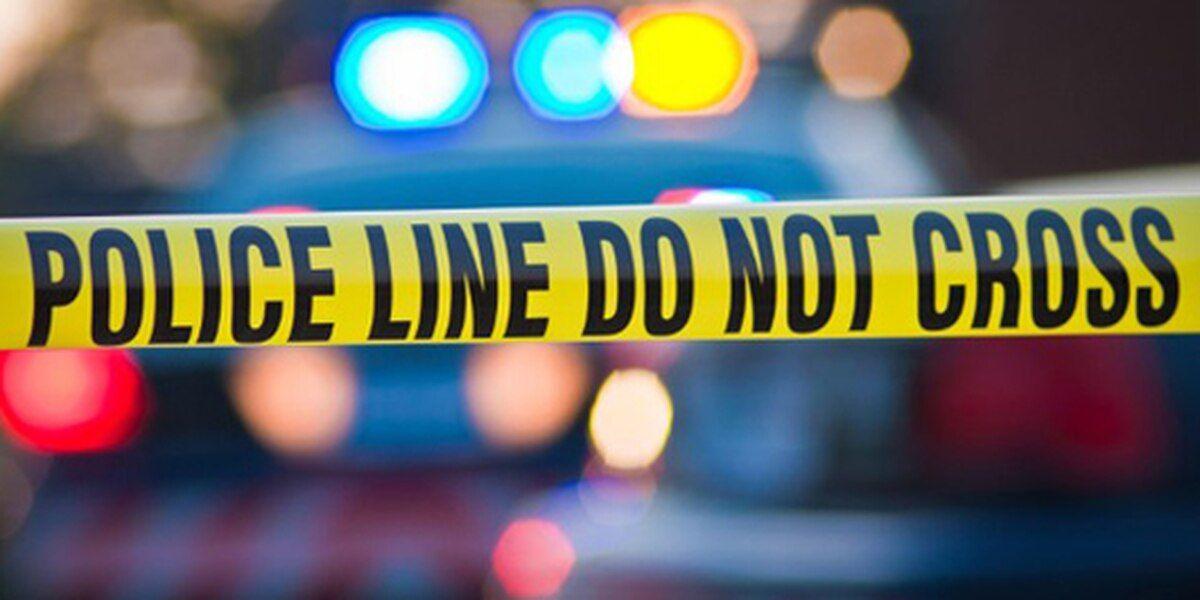 Numerosas muertes fueron reportadas en el Condado de Jefferson, durante el fin de semana festivo