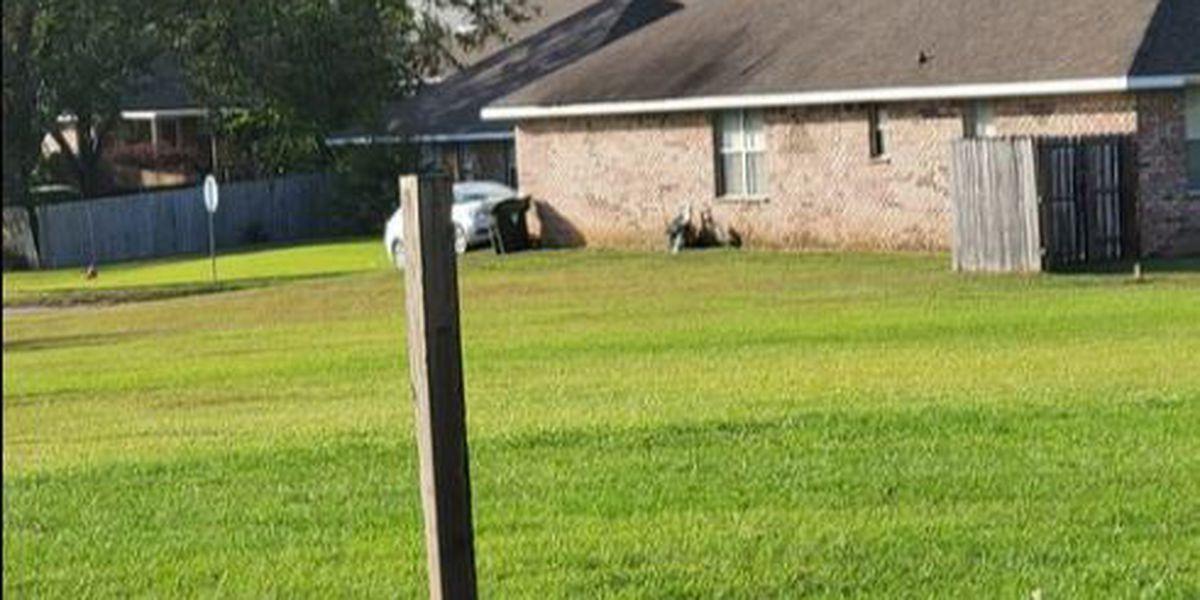 avion de armada se estrella en Foley