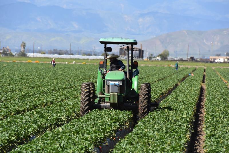 Campesinos latinos de California sufren alto nivel de contaminación del agua