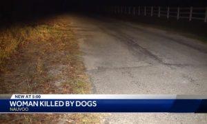 Mujer muere tras ser atacada por varios perros en el condado de Walker