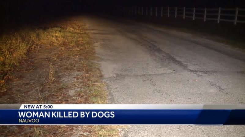 mujer muere por mordidas de perros