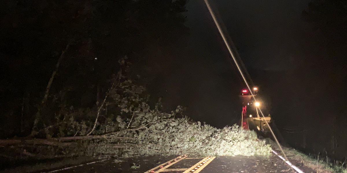 Más de 500 mil personas sin energía, después de que Zeta impactara en Alabama