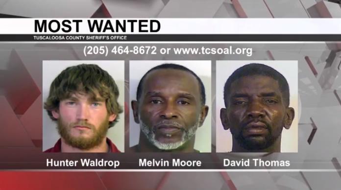 Los más buscados de Tuscaloosa: 28 de abril de 2021