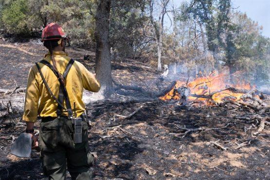 La temporada de incendios se adelanta varios meses en la costa oeste