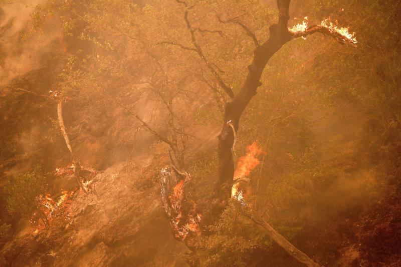 Los bomberos logran contener más del 50 % del mayor incendio activo en EEUU