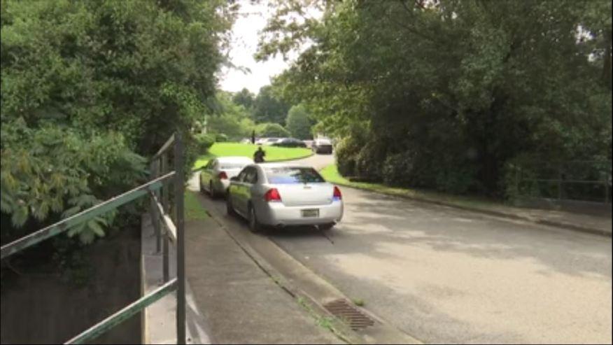 Niña de 11 meses muere tras tiroteo en Carson Road
