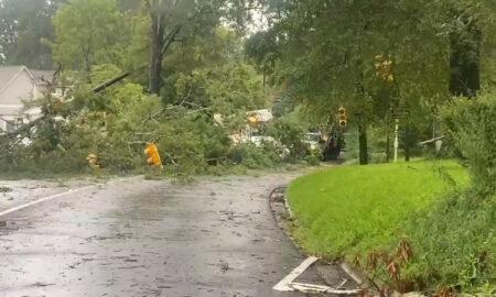 Casas y árboles dañados por la tormenta en el centro de Alabama