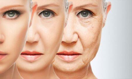 Revertir el envejecimiento, una realidad